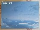 Картина художника Дениса Пеермана.Анарктида.